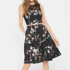 NWT WHBM floral print scuba fit and flare dress